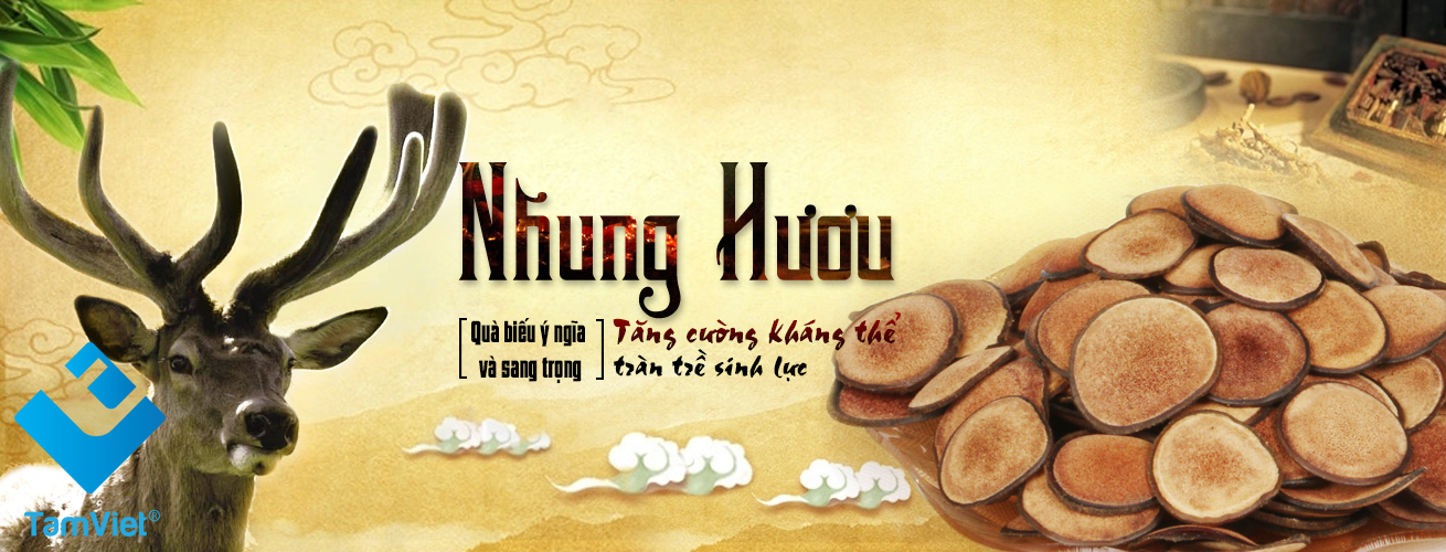 banner-nhung-huou