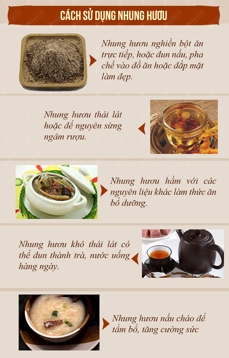 cach-su-dung-nhung-huou-altai