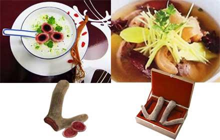 Image result for món ăn tư nhung hươu huong son