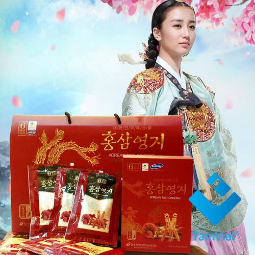 hong-sam-pocheon 2