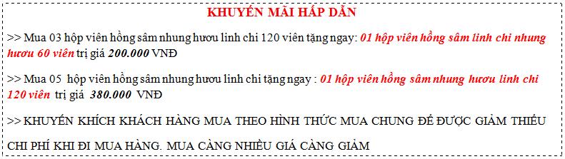 khuyen-mai-hong-sam-nhung-huou-linh-chi