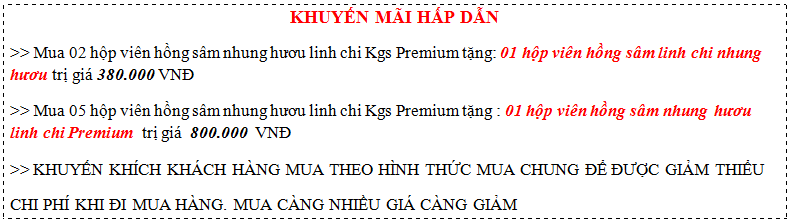 khuyen-mai-kgs-premium
