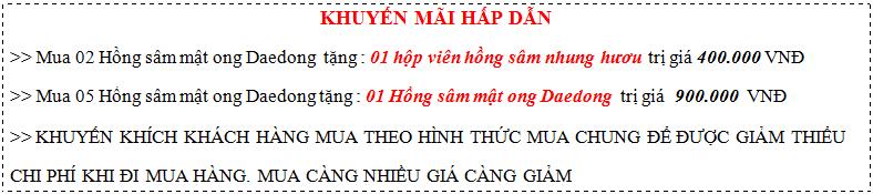 khuyen-mai-sam-mat-ong-daedong-1