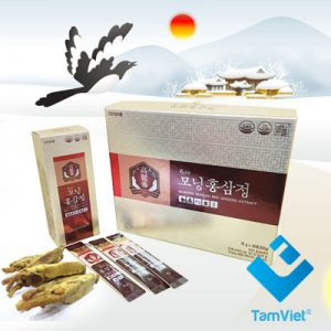 morning-korea-red-gin-seng-extract